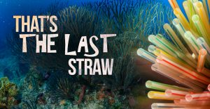 "Photo of ocean with a bundle of straws and the words ""That's the last straw"""